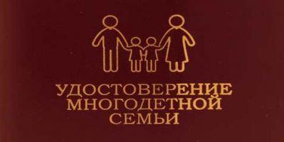 Какие льготы могут получить многодетные семьи в Подмосковье