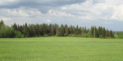 Разрешение на размещение объектов на земельных участках Подмосковья