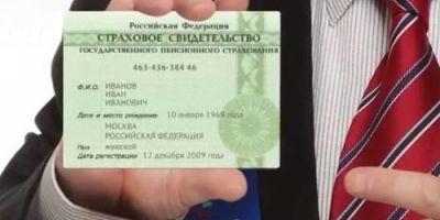 Бумажный СНИЛС в России больше выдаваться не будет