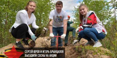 Игорь Брынцалов и Сергей Юров высадили сосны на акции «Лес Победы»