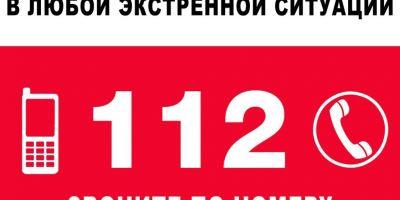 5 способов обратиться в систему 112 в Подмосковье